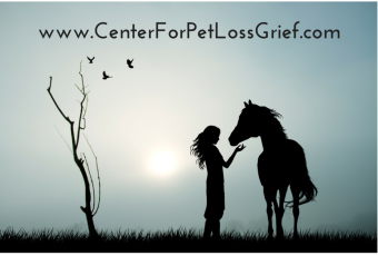 Never Feel Alone with Your Grief and Loss Stages for Pet Loss Again!